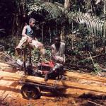 houtbedrijf-7