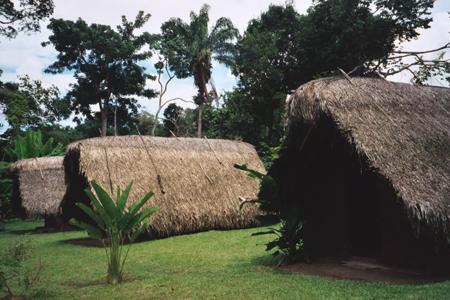 kwaikwai-6